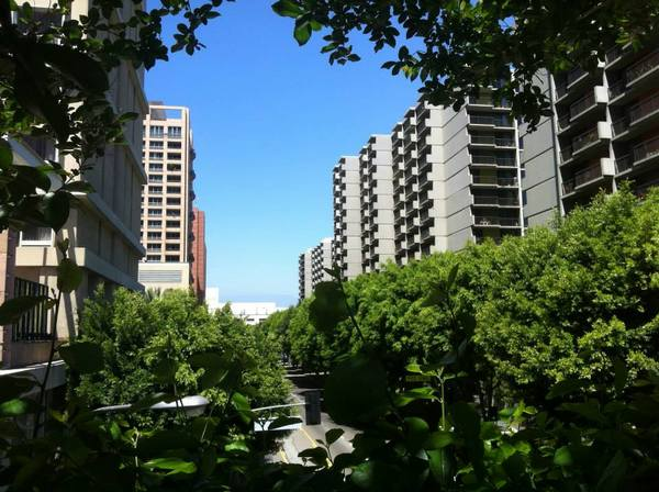 Angelus Plaza is the largest affordable housing community for the elderly in the US