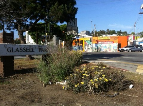 Breadbaskets and head gaskets -- Exploring Glassell Park at the Amoeblog