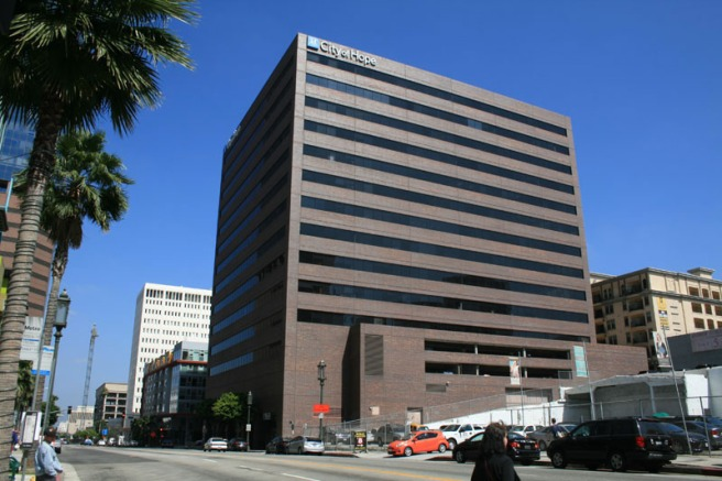 1055 Wilshire (image source: unknown)