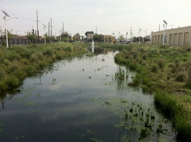 Artificial Wetlands