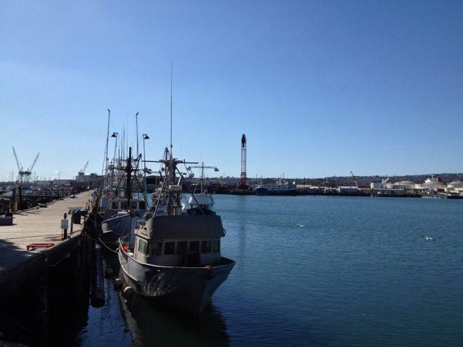 Fish Harbor