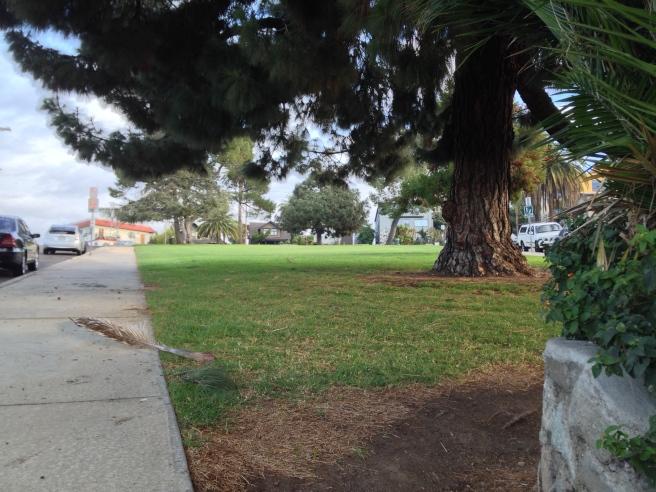 Everett Park 2