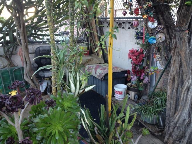 Seng's Garden