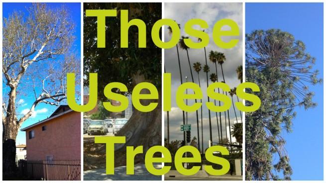 Those Useless Trees