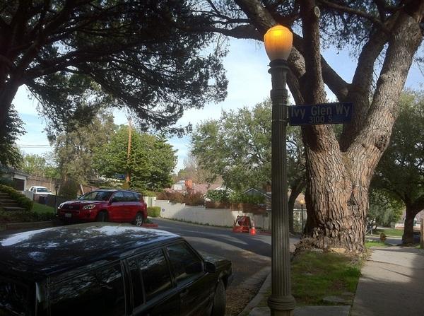Cheviot Hills street