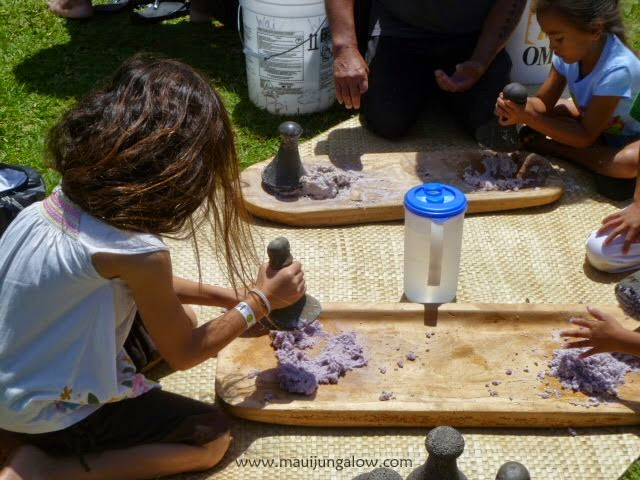 Child laborers making poi (Image source: Maui Jungalow)