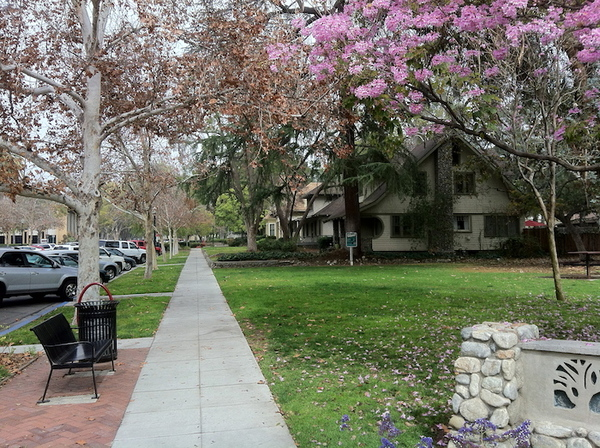 Shelton Park in Claremont