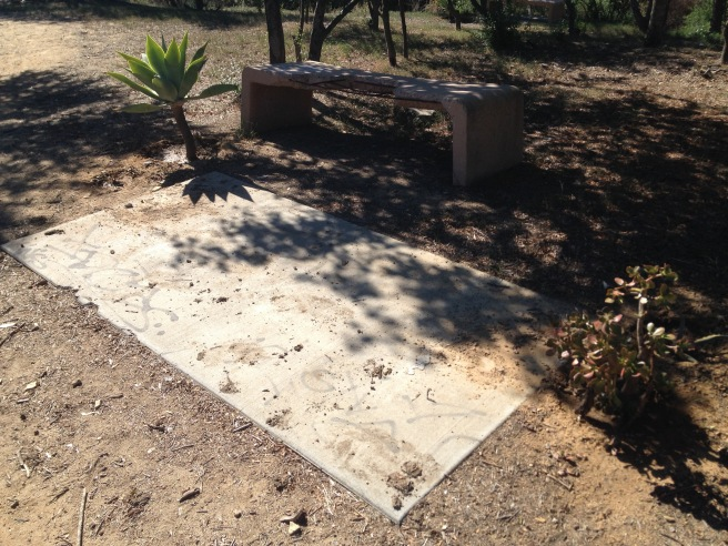 Guerrilla gardening? A crumbling bench