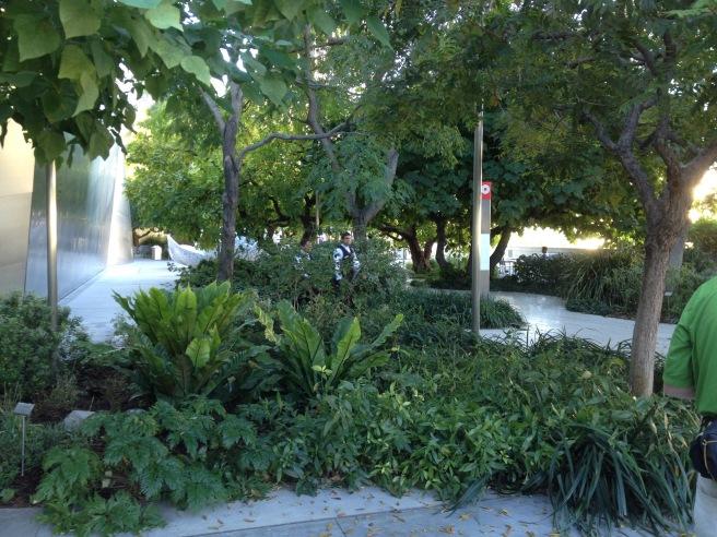 Walt Disney Garden