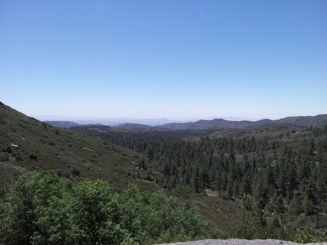 View_of_Cleveland_National_Forest_from_Mount_Laguna