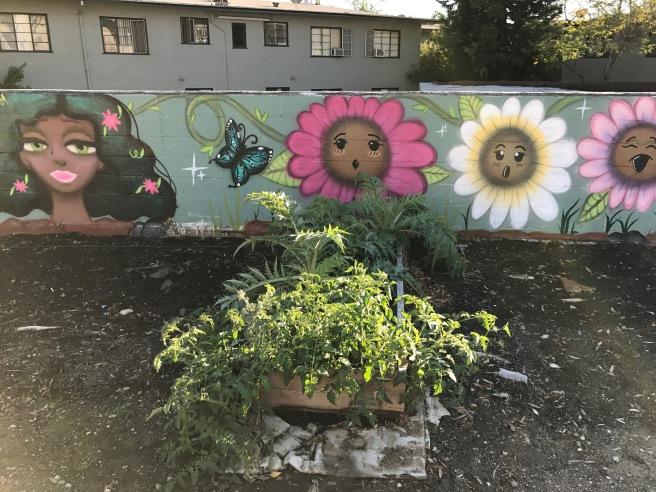 verge-garden