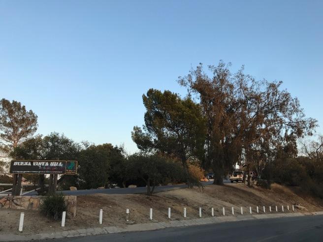 Buena Vista Hill