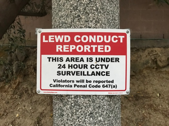 Lewd Conduct