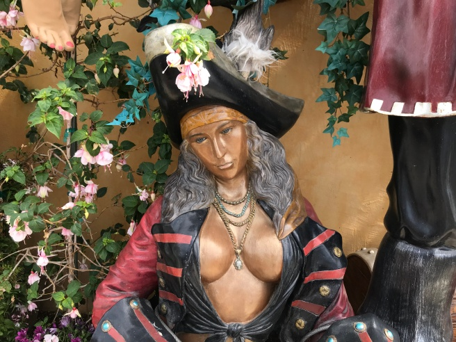 Busty pirate