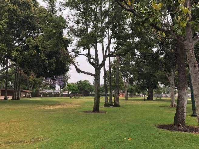 Centro-Lions Park