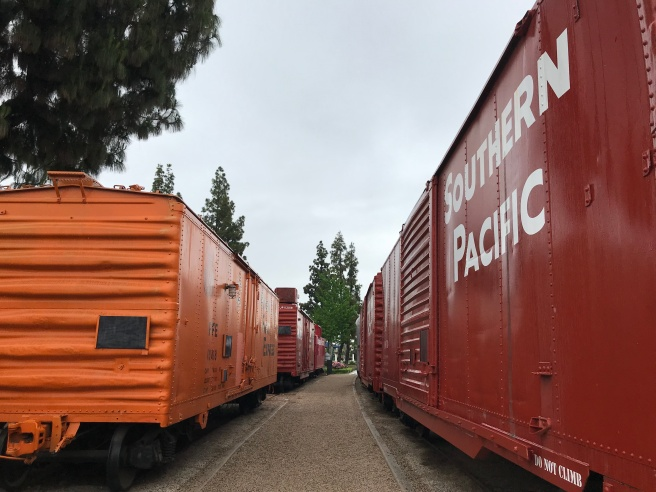 Train cars.JPG