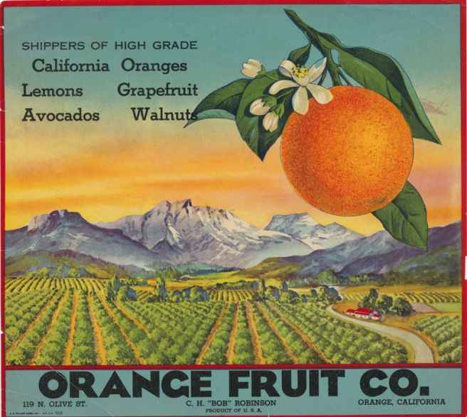 Orange Fruit Co..jpg